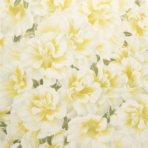 Papier peint Variegated Azalea Mimosa, John Dorian