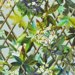 Papier peint Canopy Celadon, Christian Lacroix